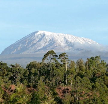 9 Days Hiking Mountain Kilimanjaro- Marangu Route